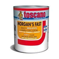 MORGAN'S FAST SMALTO A RAPIDA ESSICCAZIONE